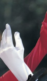 219img.php  181x312 - Длинные перчатки