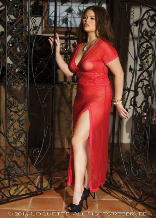c 1431plus 11 500x701 - Великолепное сетчатое платье большого размера