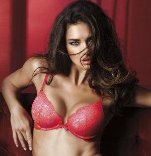 Adriana Lima 21 300x311 - Адриана Лима (Adriana Lima) в сексуальном белье