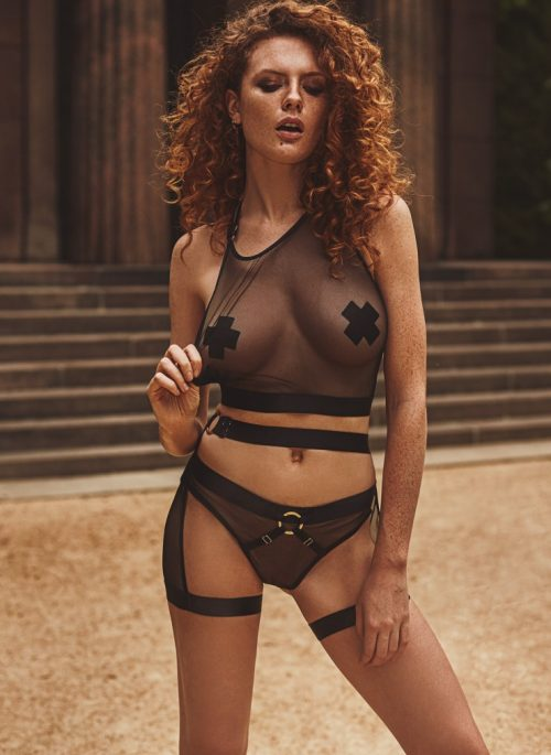 anais reverie flirtoshop.com.ua 500x685 - Комплект из эластичной сетки Anais Reverie
